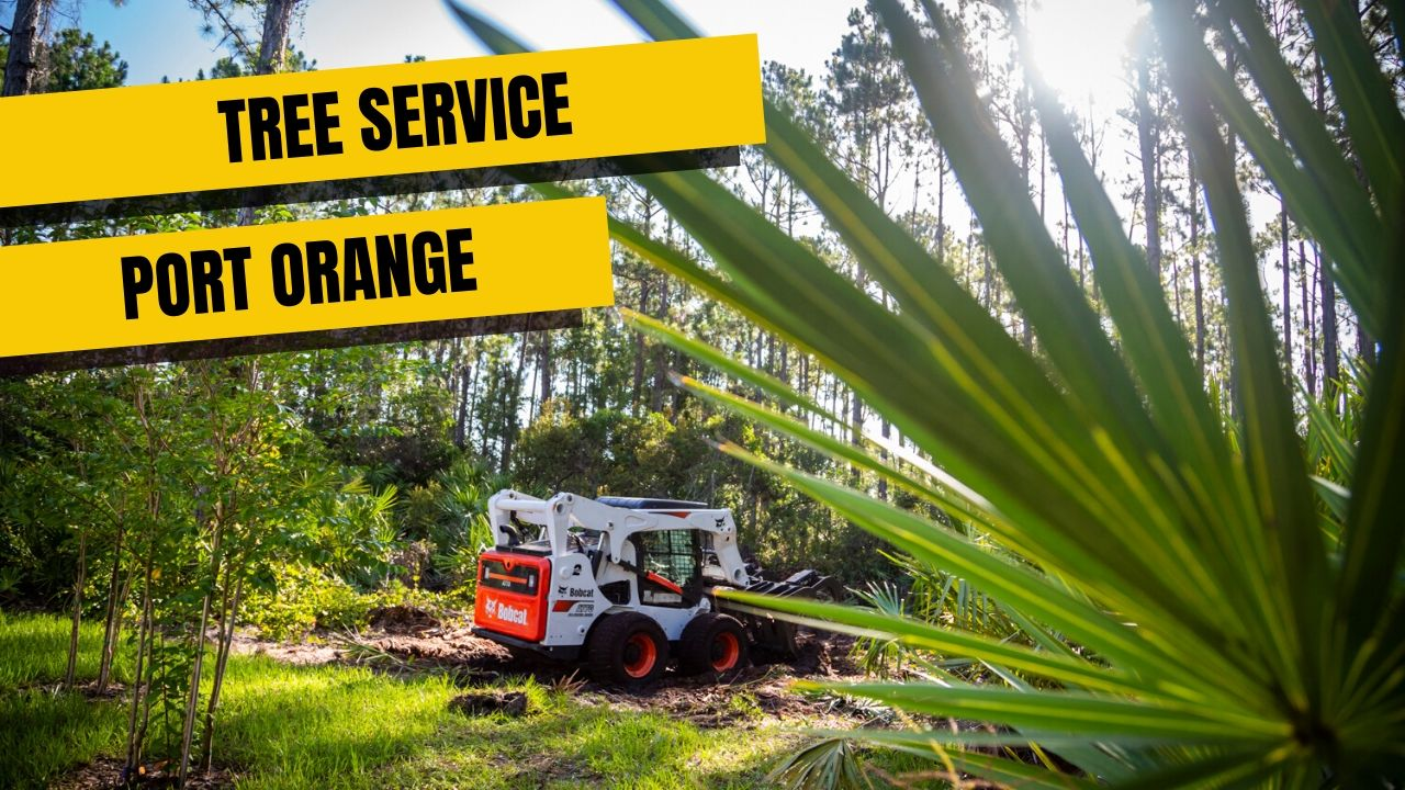 Tree Service in Port Orange, FL