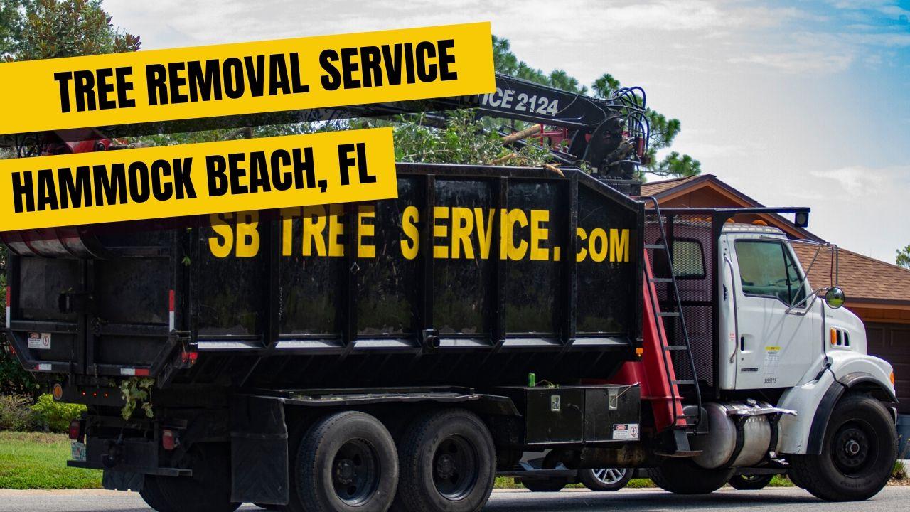 Tree Removal Service Hammock Beach FL