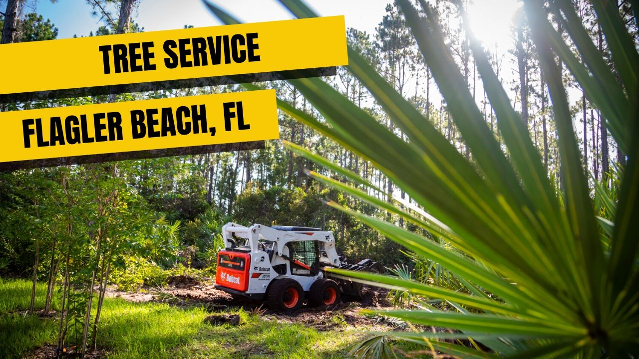 Tree Service In Flagler Beach