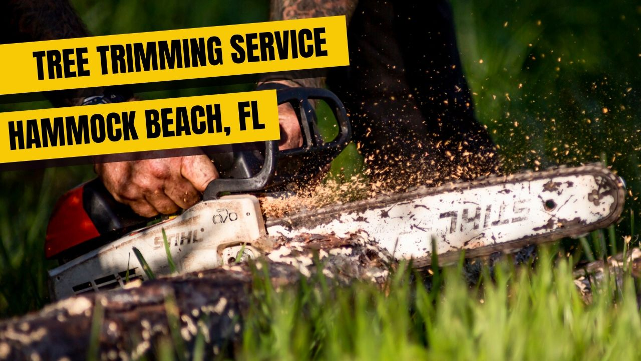 Tree Trimming Service Hammock Beach FL