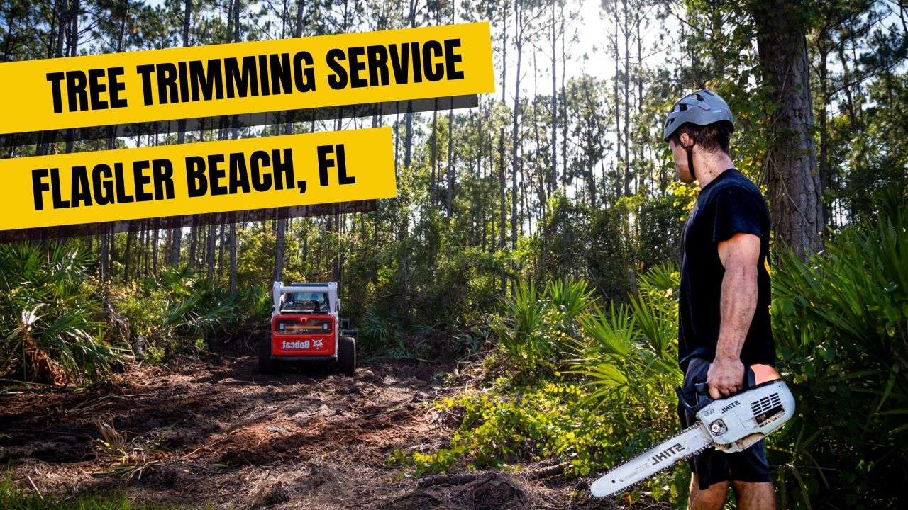 Tree Trimming Service In Flagler Beach FL