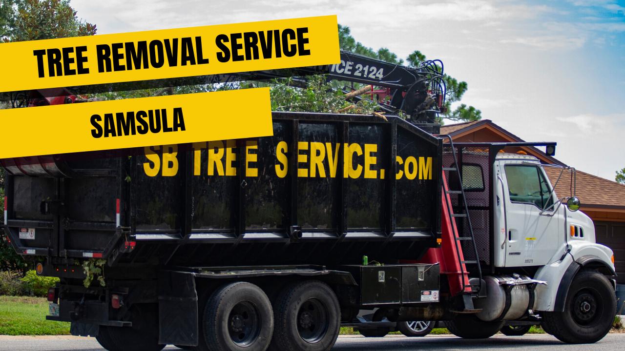 Tree Removal Service in Samsula