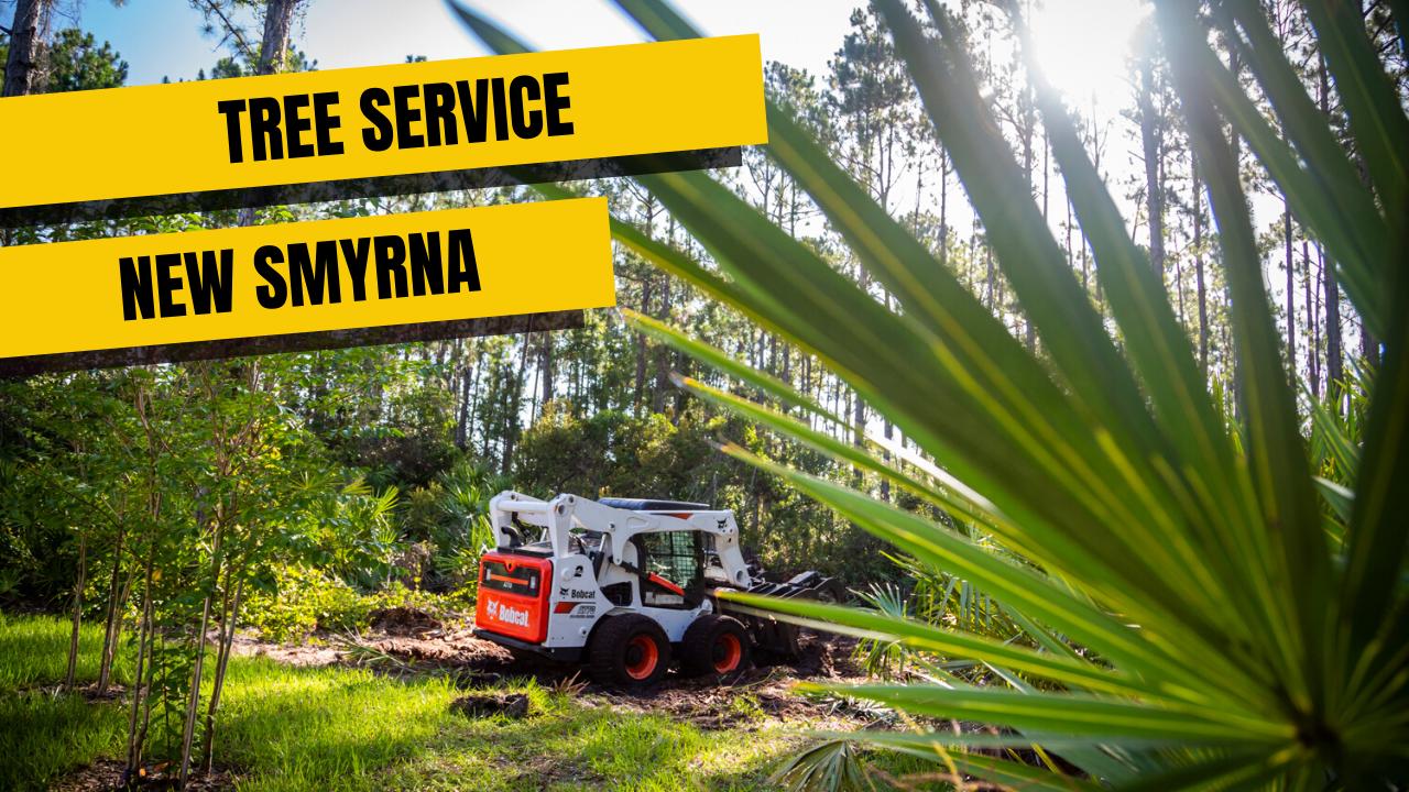 Tree Service in New Smyrna