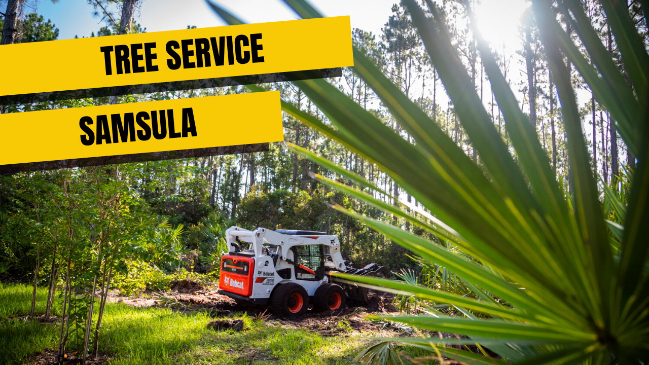 Tree Service in Samsula
