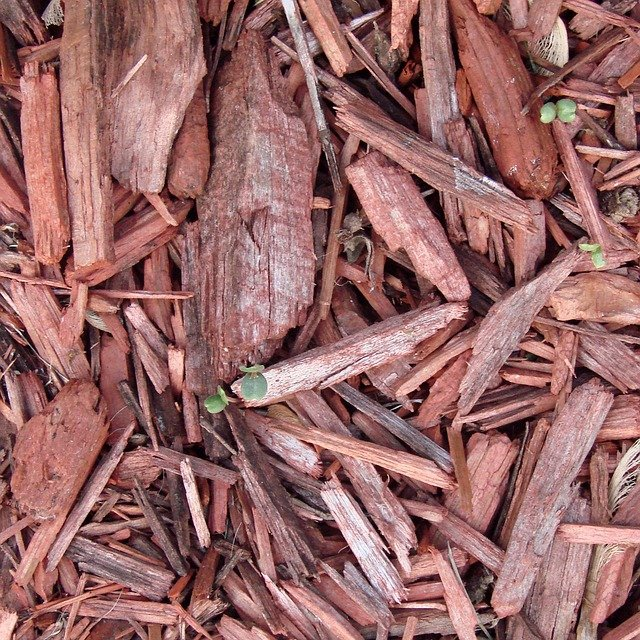 The Real Benefits of Mulch